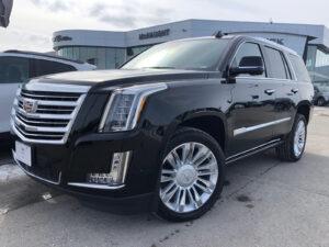 2023 Cadillac Escalade Pictures